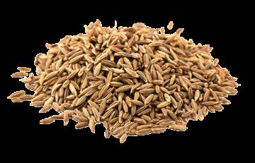Organic Cumin (Jeera)
